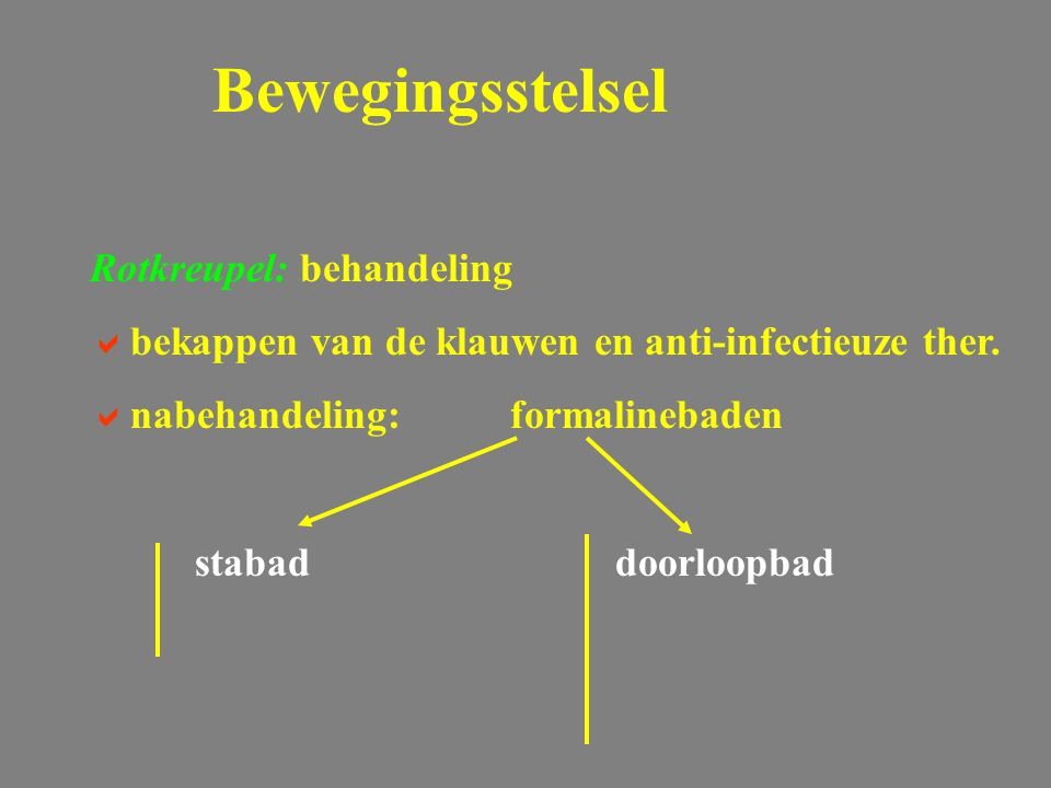 Rotkreupel: behandeling  bekappen van de klauwen en anti-infectieuze ther.