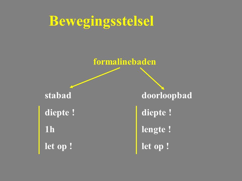 Voortplantingsstelsel Mastitis: behandeling  overdag:  's avonds:  vaak mastitis preparaten rund doch !!.