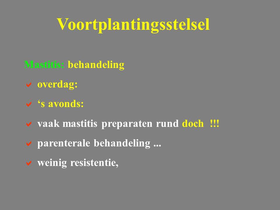 Voortplantingsstelsel Mastitis: behandeling  overdag:  's avonds:  vaak mastitis preparaten rund doch !!!  parenterale behandeling...  weinig res
