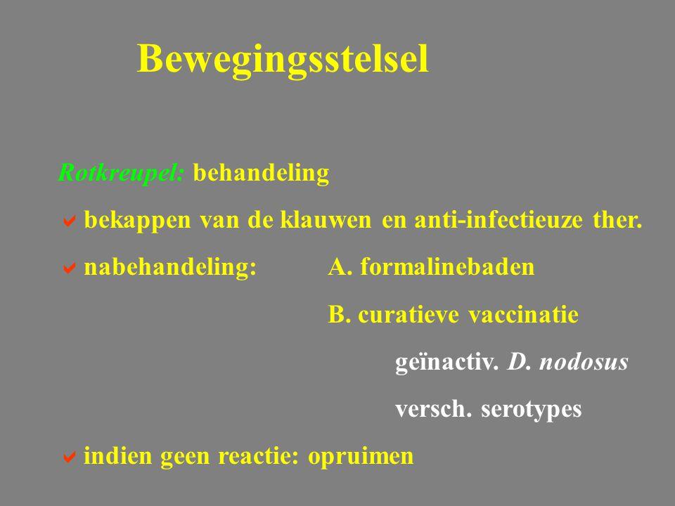 Rotkreupel: behandeling  bekappen van de klauwen en anti-infectieuze ther.  nabehandeling: A. formalinebaden B. curatieve vaccinatie geïnactiv. D. n