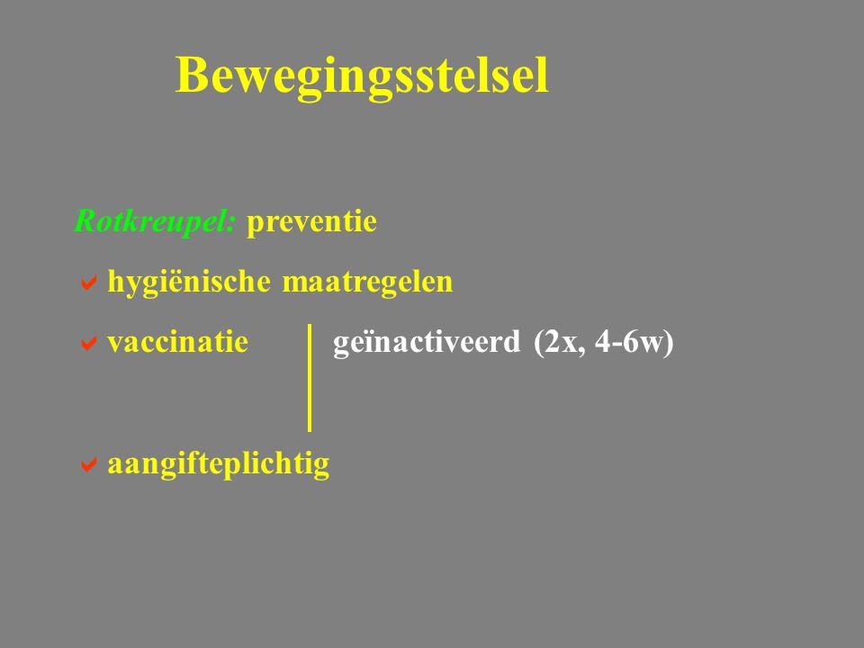Rotkreupel: preventie  hygiënische maatregelen  vaccinatiegeïnactiveerd (2x, 4-6w)  aangifteplichtig Bewegingsstelsel