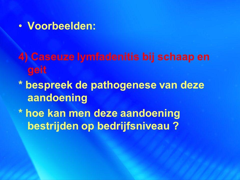 Voorbeelden: 4) Caseuze lymfadenitis bij schaap en geit * bespreek de pathogenese van deze aandoening * hoe kan men deze aandoening bestrijden op bedr