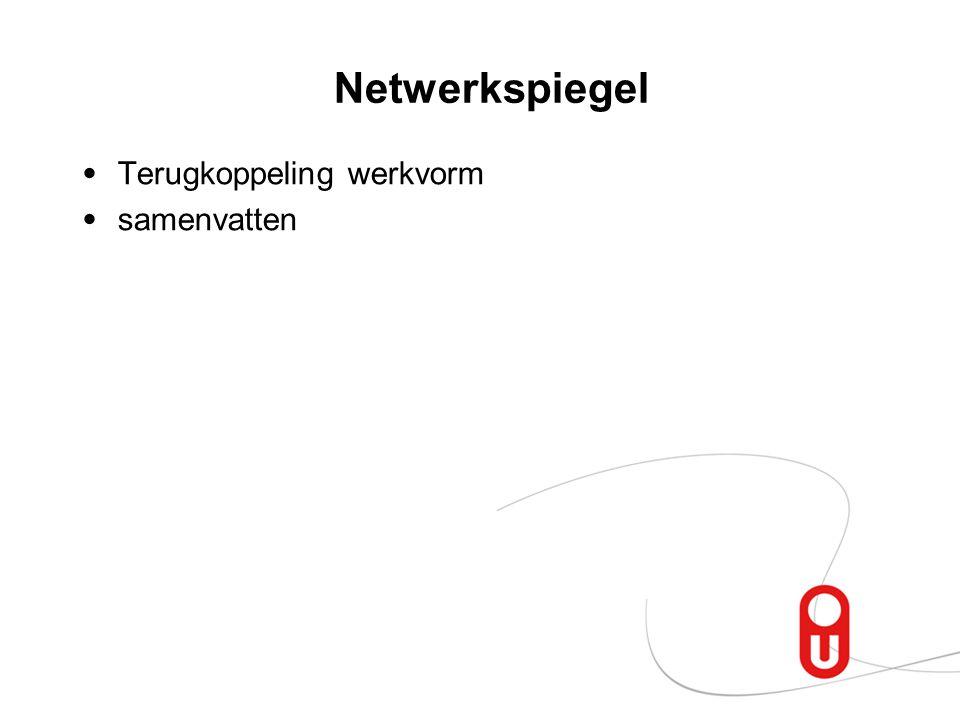 Netwerkspiegel Terugkoppeling werkvorm samenvatten