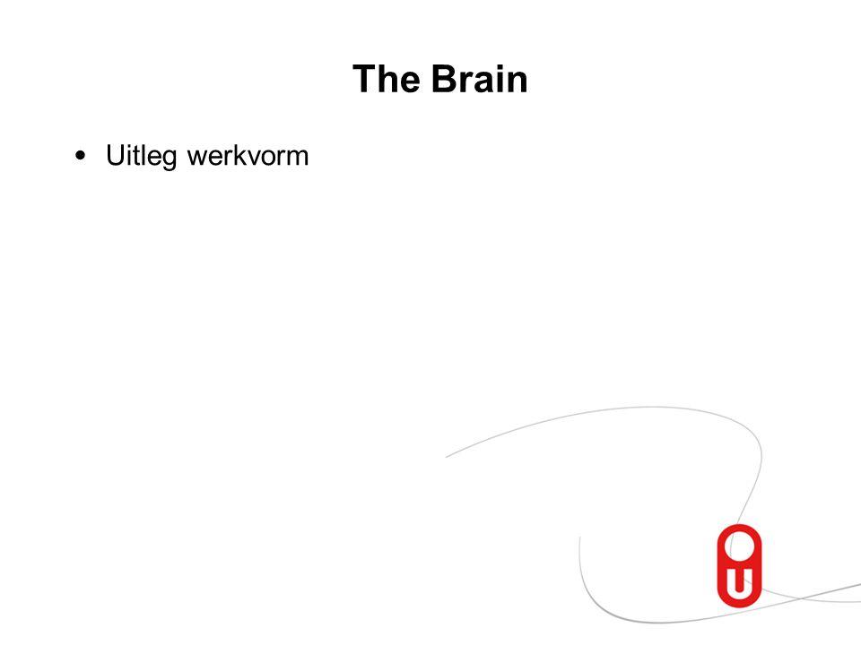 The Brain Uitleg werkvorm