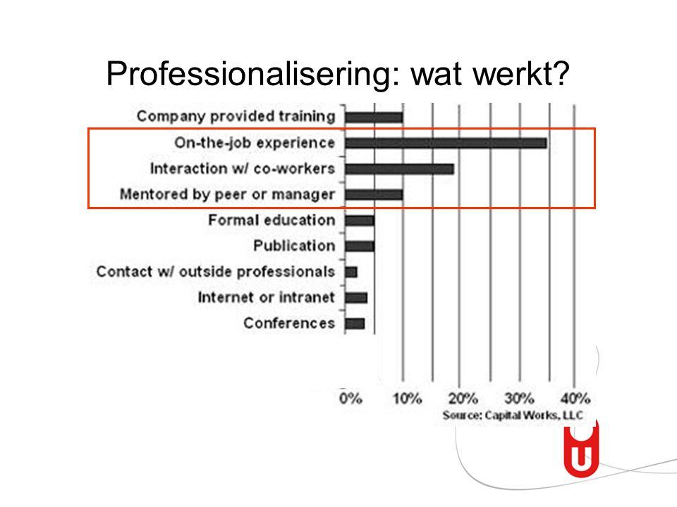 Professionalisering: wat werkt?