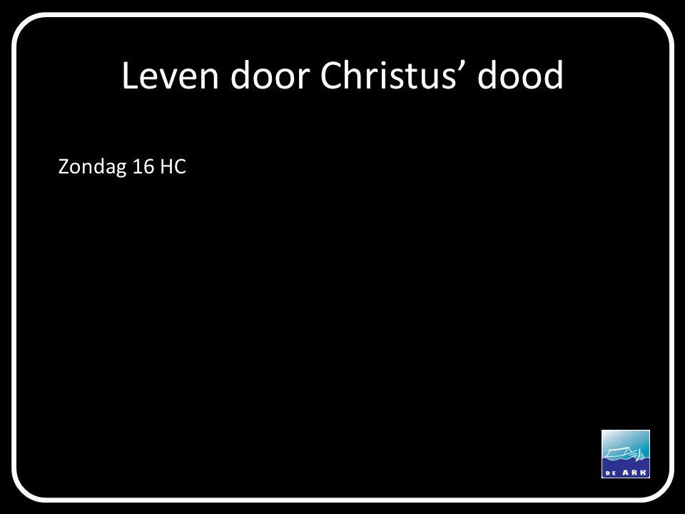 Leven door Christus' dood Zondag 16 HC