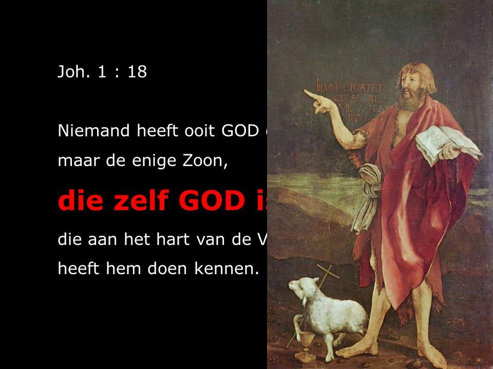 Joh. 1 : 18 Niemand heeft ooit GOD gezien, maar de enige Zoon, die zelf GOD is, die aan het hart van de Vader rust, heeft hem doen kennen.