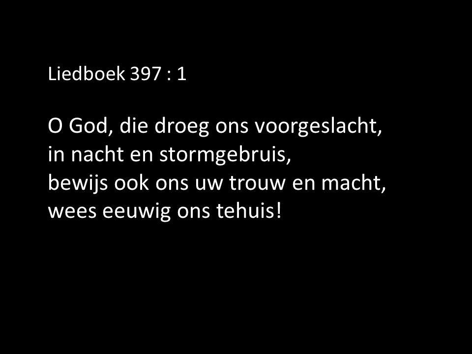 Liedboek 397 : 1 O God, die droeg ons voorgeslacht, in nacht en stormgebruis, bewijs ook ons uw trouw en macht, wees eeuwig ons tehuis!