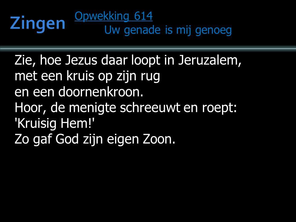 Opwekking 614 Uw genade is mij genoeg Zie het Lam aan het kruis daar op Golgotha, als de Koning der Joden wordt Hij veracht.