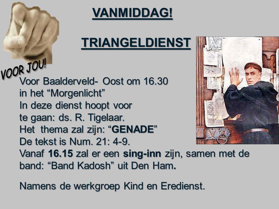 """VANMIDDAG! VANMIDDAG! TRIANGELDIENST TRIANGELDIENST Voor Baalderveld- Oost om 16.30 in het """"Morgenlicht"""" In deze dienst hoopt voor te gaan: ds. R. Tig"""