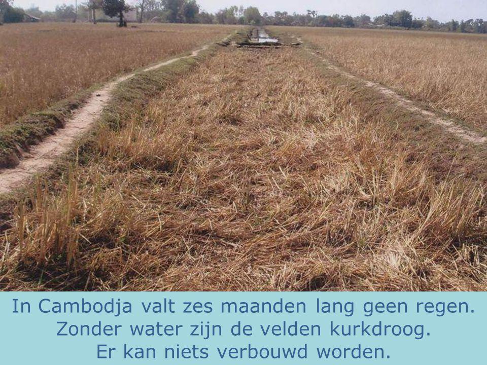 In Cambodja valt zes maanden lang geen regen. Zonder water zijn de velden kurkdroog. Er kan niets verbouwd worden.