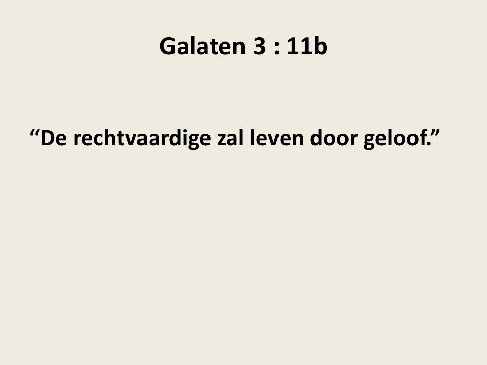 """Galaten 3 : 11b """"De rechtvaardige zal leven door geloof."""""""
