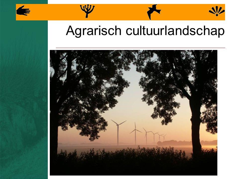 Agrarisch cultuurlandschap