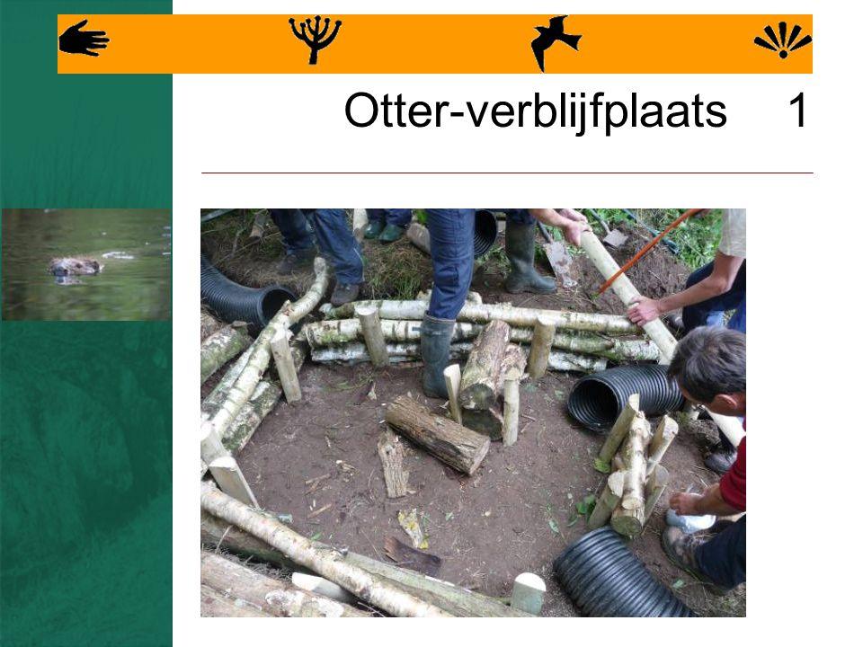 Otter-verblijfplaats 1