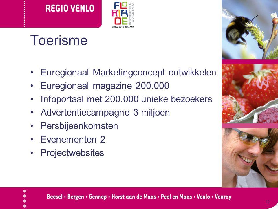 Toerisme Euregionaal Marketingconcept ontwikkelen Euregionaal magazine 200.000 Infoportaal met 200.000 unieke bezoekers Advertentiecampagne 3 miljoen