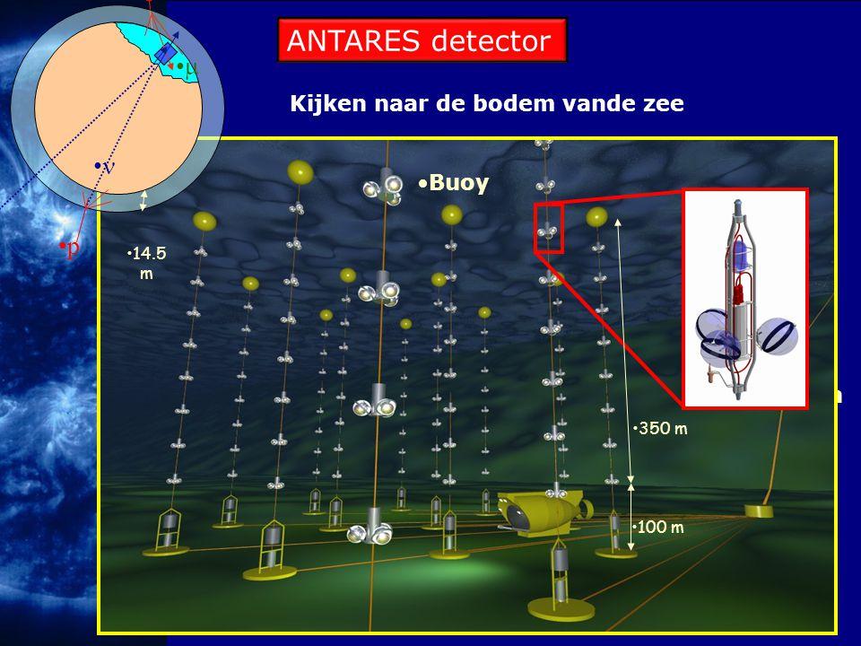 Kijken naar de bodem vande zee Junction box 14.5 m p p  Buoy 350 m 100 m ANTARES detector