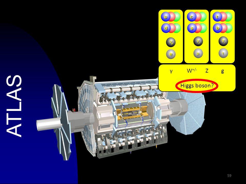 59 ATLAS γ W +/- Z g Higgs boson?