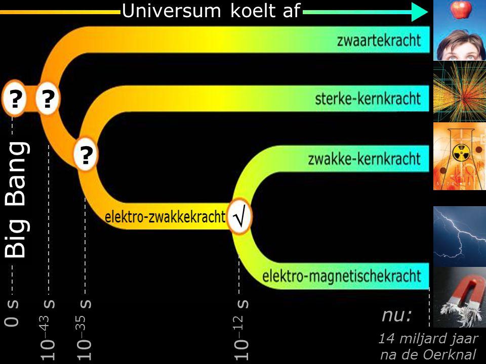 neutrinos  Waar bestaan we uit.