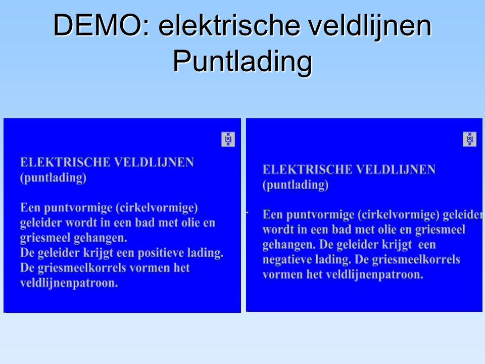 DEMO: elektrische veldlijnen Puntlading