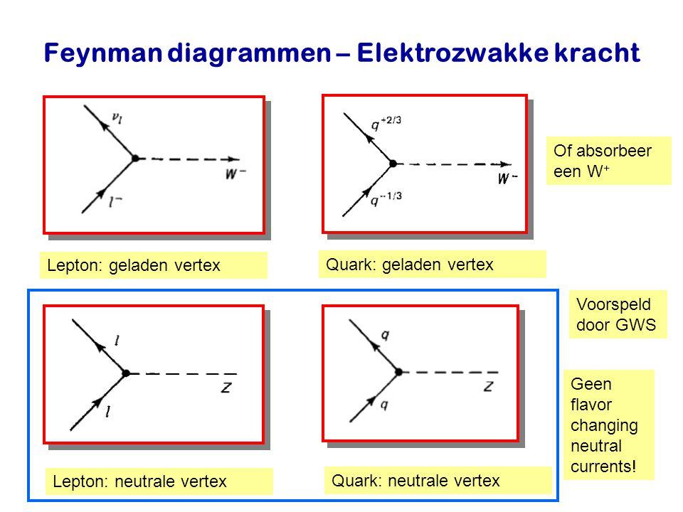 Najaar 2007Jo van den Brand14 Feynman diagrammen – Elektrozwakke kracht Lepton: geladen vertex Lepton: neutrale vertex Quark: geladen vertex Quark: ne