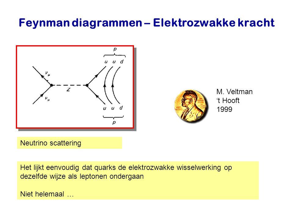 Najaar 2007Jo van den Brand19 Feynman diagrammen – Elektrozwakke kracht Neutrino scattering Het lijkt eenvoudig dat quarks de elektrozwakke wisselwerk