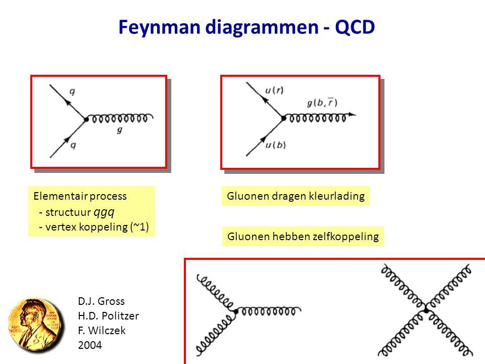 Feynman diagrammen - QCD Elementair process - structuur qgq - vertex koppeling (~1) Gluonen dragen kleurlading Gluonen hebben zelfkoppeling D.J. Gross