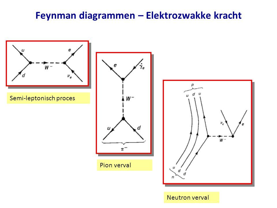 Feynman diagrammen – Elektrozwakke kracht Semi-leptonisch proces Pion verval Neutron verval