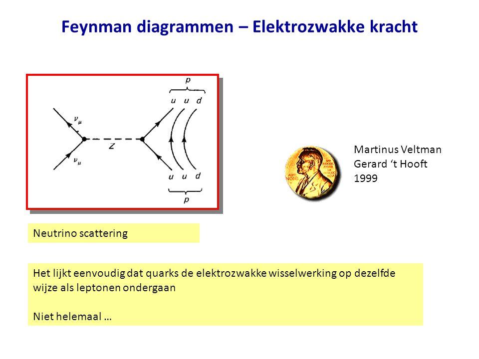 Feynman diagrammen – Elektrozwakke kracht Neutrino scattering Het lijkt eenvoudig dat quarks de elektrozwakke wisselwerking op dezelfde wijze als lept