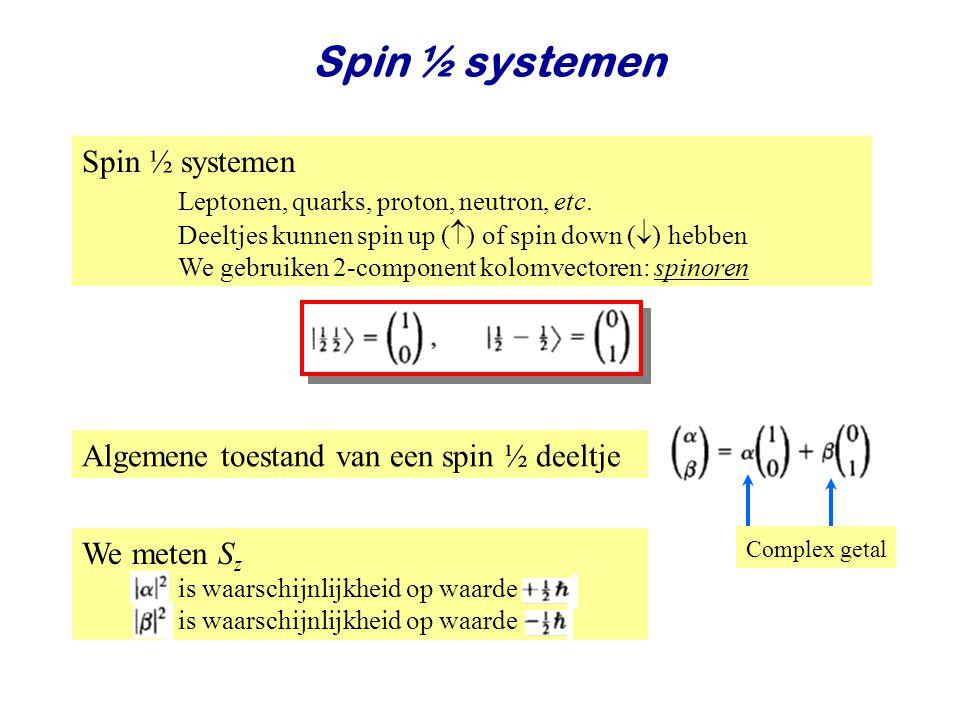 Najaar 2008Jo van den Brand19 Spin ½ systemen Leptonen, quarks, proton, neutron, etc. Deeltjes kunnen spin up (  ) of spin down (  ) hebben We gebru