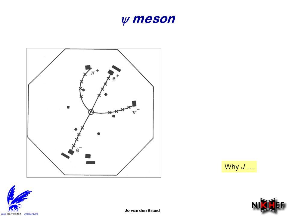 Jo van den Brand  meson Why J …