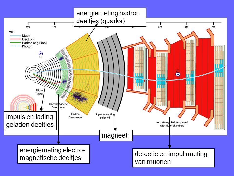 impuls en lading geladen deeltjes energiemeting electro- magnetische deeltjes energiemeting hadron deeltjes (quarks) detectie en impulsmeting van muonen magneet