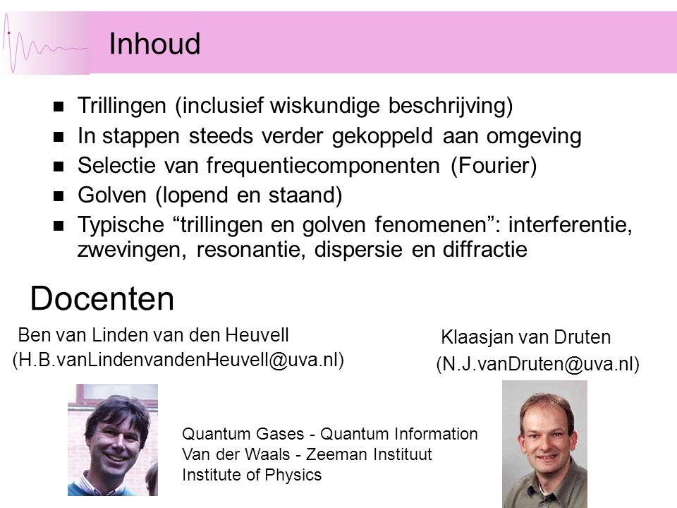 Inhoud Ben van Linden van den Heuvell (H.B.vanLindenvandenHeuvell@uva.nl) Docenten Trillingen (inclusief wiskundige beschrijving) In stappen steeds ve