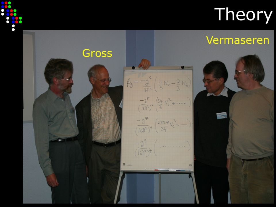 Theory Gross Vermaseren