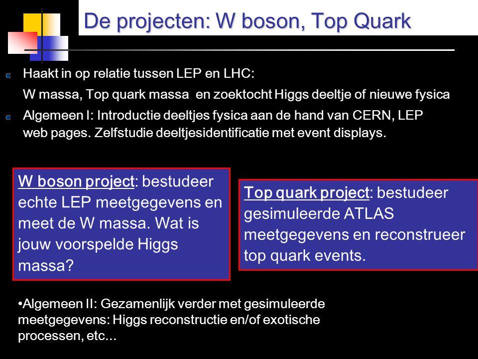 De projecten: W boson, Top Quark Haakt in op relatie tussen LEP en LHC: W massa, Top quark massa en zoektocht Higgs deeltje of nieuwe fysica Algemeen