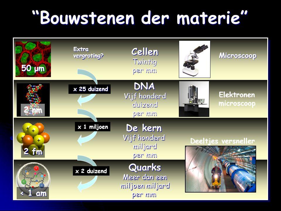 """""""Bouwstenen der materie"""" Cellen Twintig per mm DNA Vijf honderd DNA Vijf honderd duizend per mm De kern Vijf honderd miljard per mm Quarks Meer dan ee"""