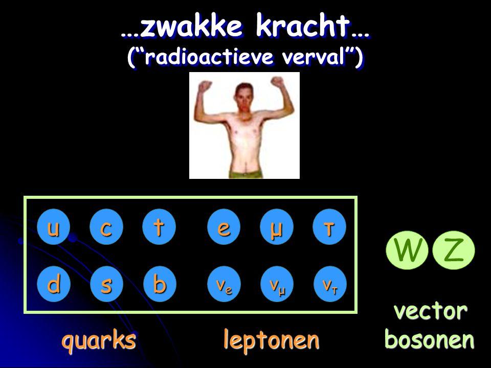 "eμτ νeνeνeνe νμνμνμνμ ντντντντ uct dsb quarksleptonen …zwakke kracht… (""radioactieve verval"") vectorbosonen WZ"