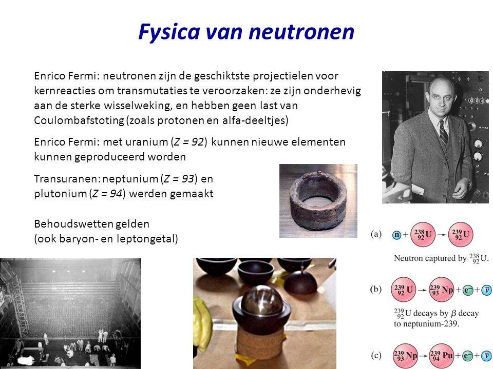 Fysica van neutronen Enrico Fermi: neutronen zijn de geschiktste projectielen voor kernreacties om transmutaties te veroorzaken: ze zijn onderhevig aa