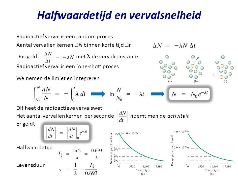 Halfwaardetijd en vervalsnelheid Radioactief verval is een random proces Aantal vervallen kernen  N binnen korte tijd  t Dus geldt, met de vervalcon