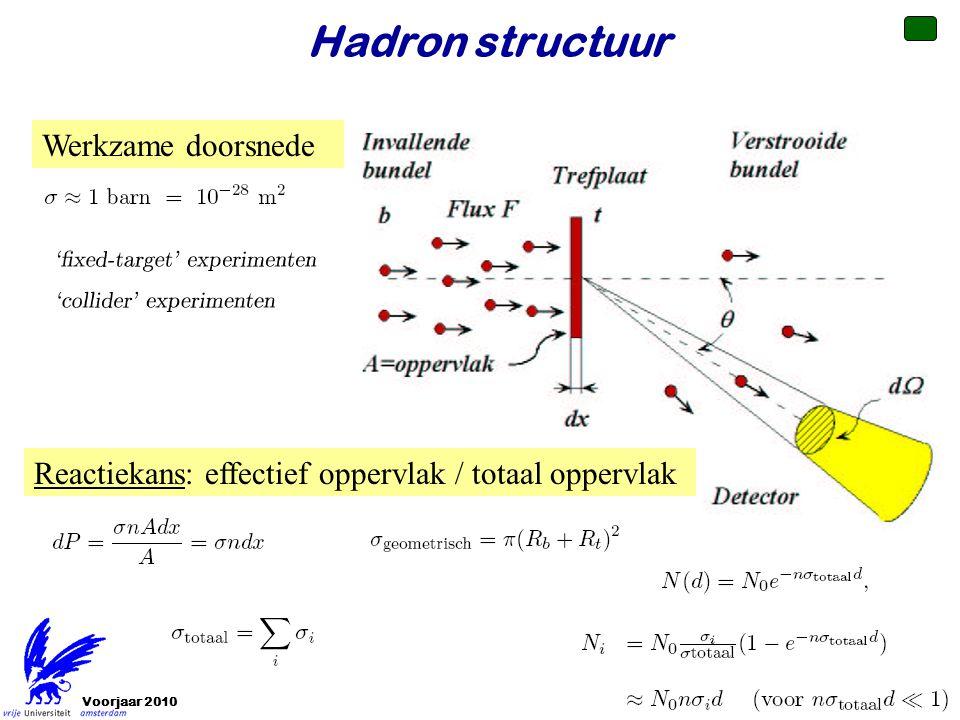 Voorjaar 2010 Hadron structuur Werkzame doorsnede Reactiekans: effectief oppervlak / totaal oppervlak