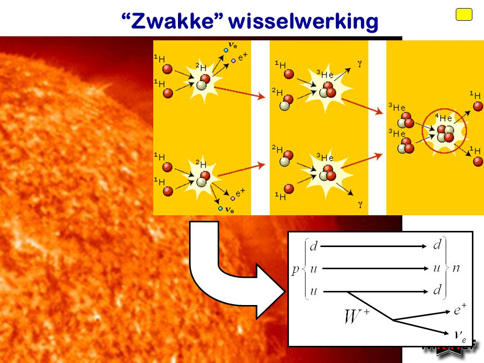 Voorjaar 2010 Quarks en leptonen Quarks Leptonen