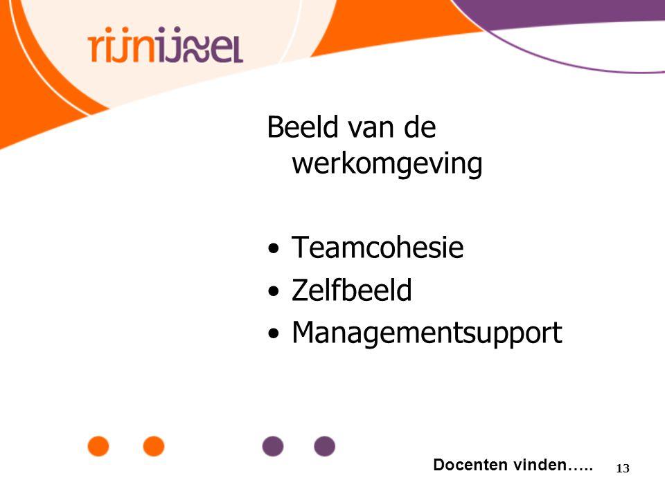 Beeld van de werkomgeving Teamcohesie Zelfbeeld Managementsupport 13 Docenten vinden…..
