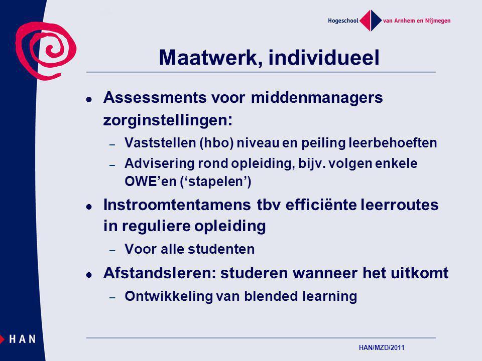 Maatwerk, individueel Assessments voor middenmanagers zorginstellingen : – Vaststellen (hbo) niveau en peiling leerbehoeften – Advisering rond opleiding, bijv.