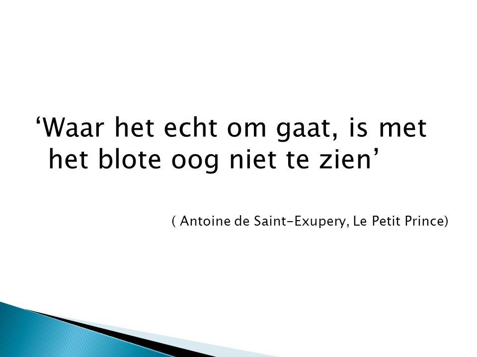 'Waar het echt om gaat, is met het blote oog niet te zien' ( Antoine de Saint-Exupery, Le Petit Prince)