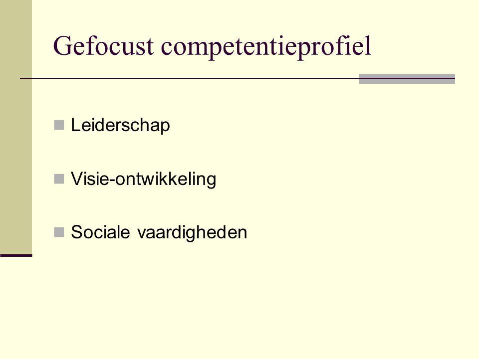 Gefocust competentieprofiel Leiderschap Visie-ontwikkeling Sociale vaardigheden