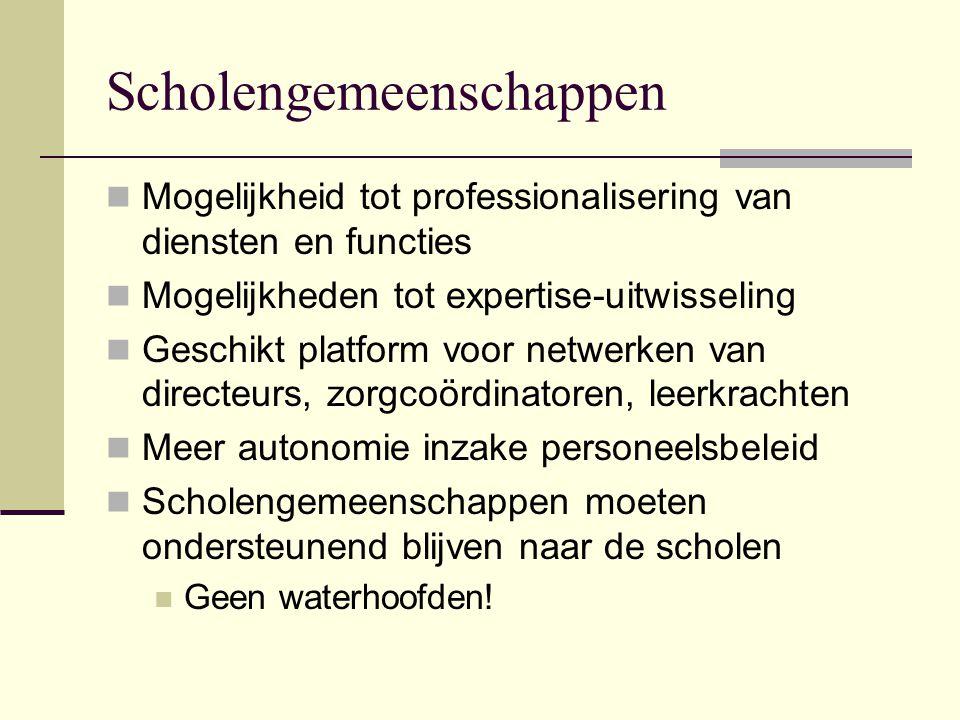 Scholengemeenschappen Mogelijkheid tot professionalisering van diensten en functies Mogelijkheden tot expertise-uitwisseling Geschikt platform voor ne