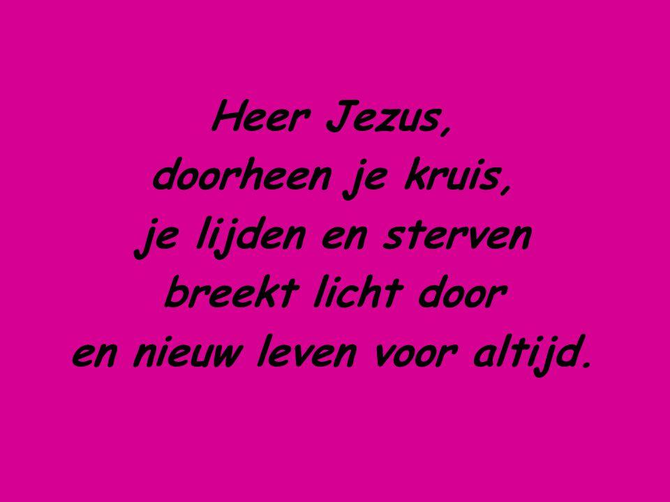 Heer Jezus, doorheen je kruis, je lijden en sterven breekt licht door en nieuw leven voor altijd.