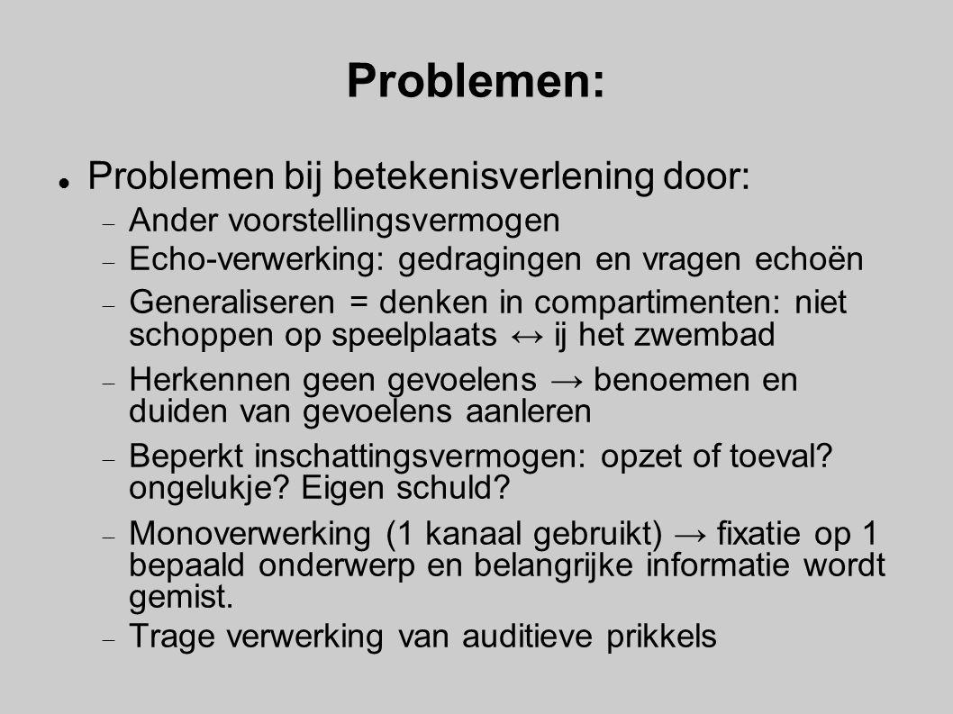 Problemen: Problemen bij betekenisverlening door:  Ander voorstellingsvermogen  Echo-verwerking: gedragingen en vragen echoën  Generaliseren = denk