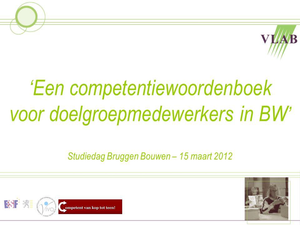 'Een competentiewoordenboek voor doelgroepmedewerkers in BW ' Studiedag Bruggen Bouwen – 15 maart 2012