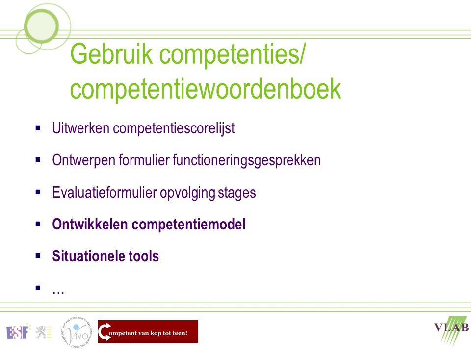 Gebruik competenties/ competentiewoordenboek  Uitwerken competentiescorelijst  Ontwerpen formulier functioneringsgesprekken  Evaluatieformulier opv