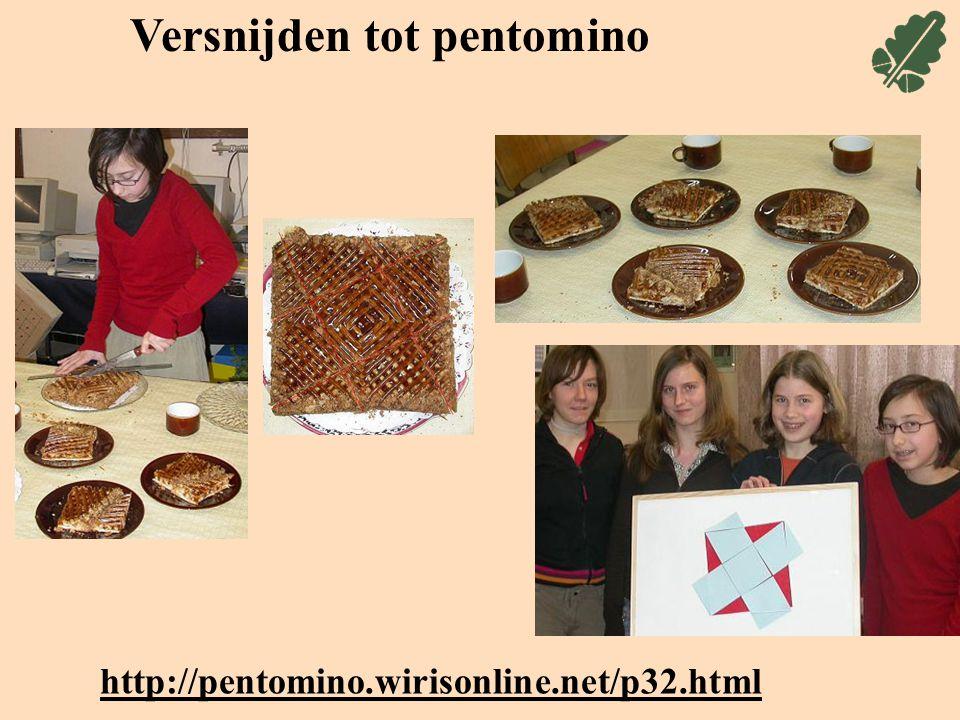 Versnijden tot pentomino http://pentomino.wirisonline.net/p32.html